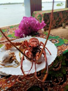 lobster seafood wasini coast